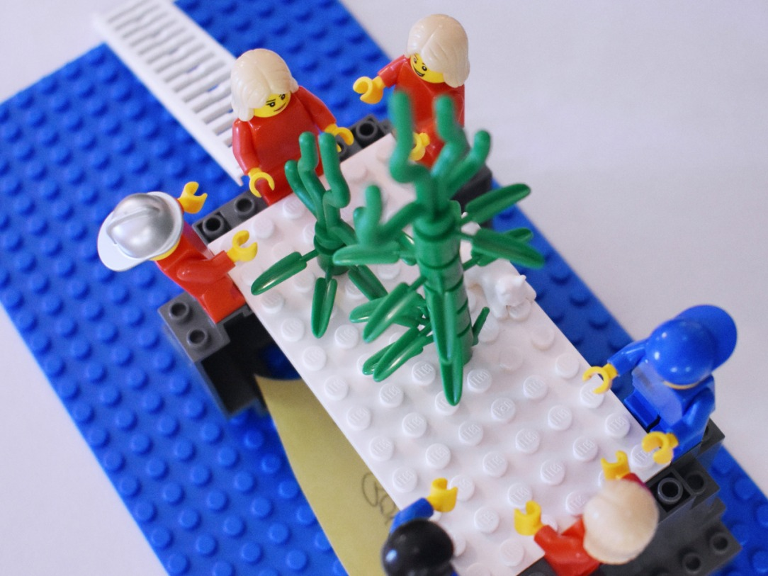 Strategy Workshops. LEGO® SERIOUS PLAY