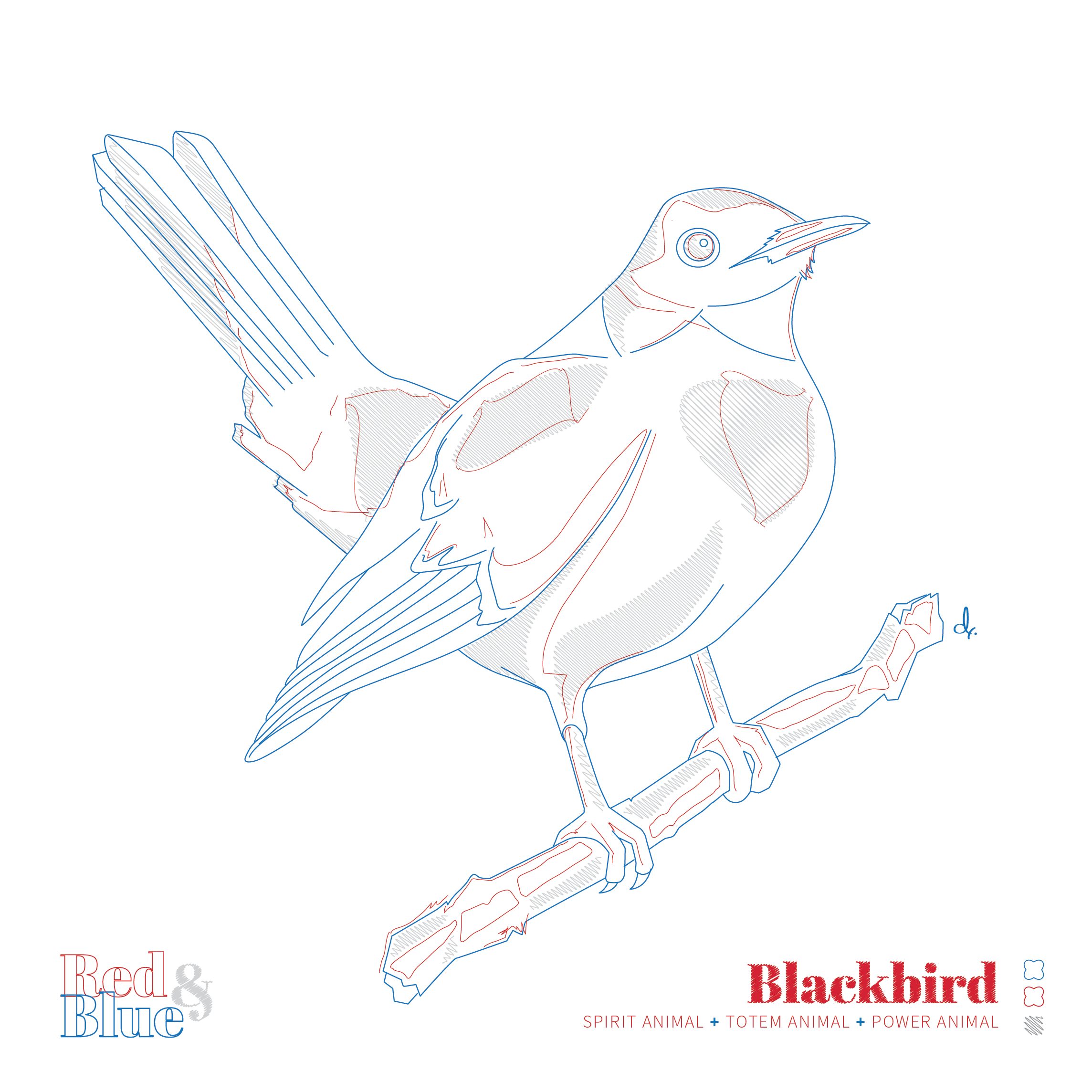 Blackbird Red and Blue Symbolism and Meaning