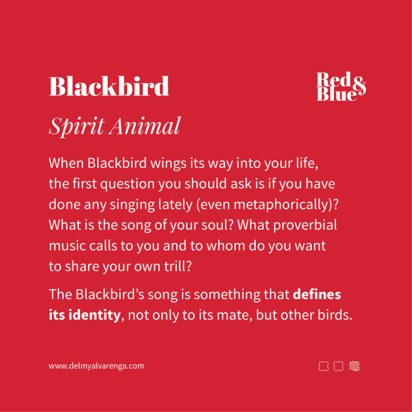 Blackbird Spirit Animal
