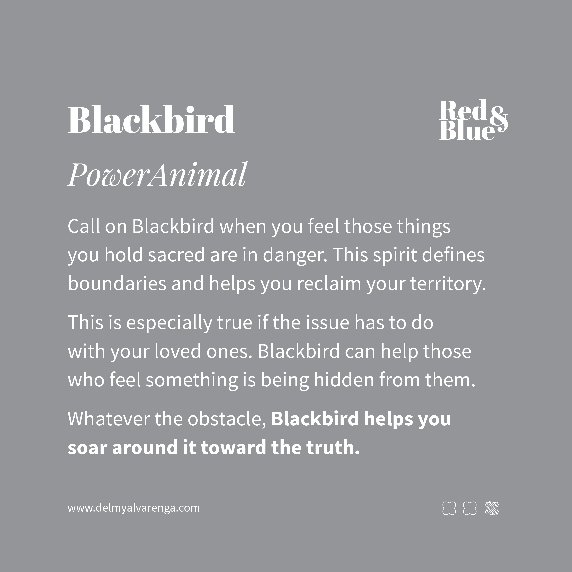 Blackbird Power Animal