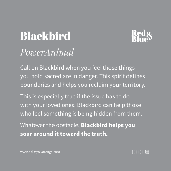 Blackbird Power Animal