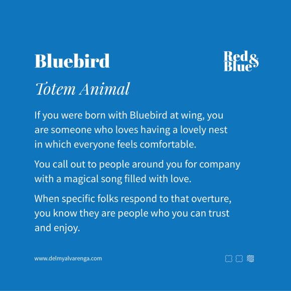 Bluebird Totem Animal