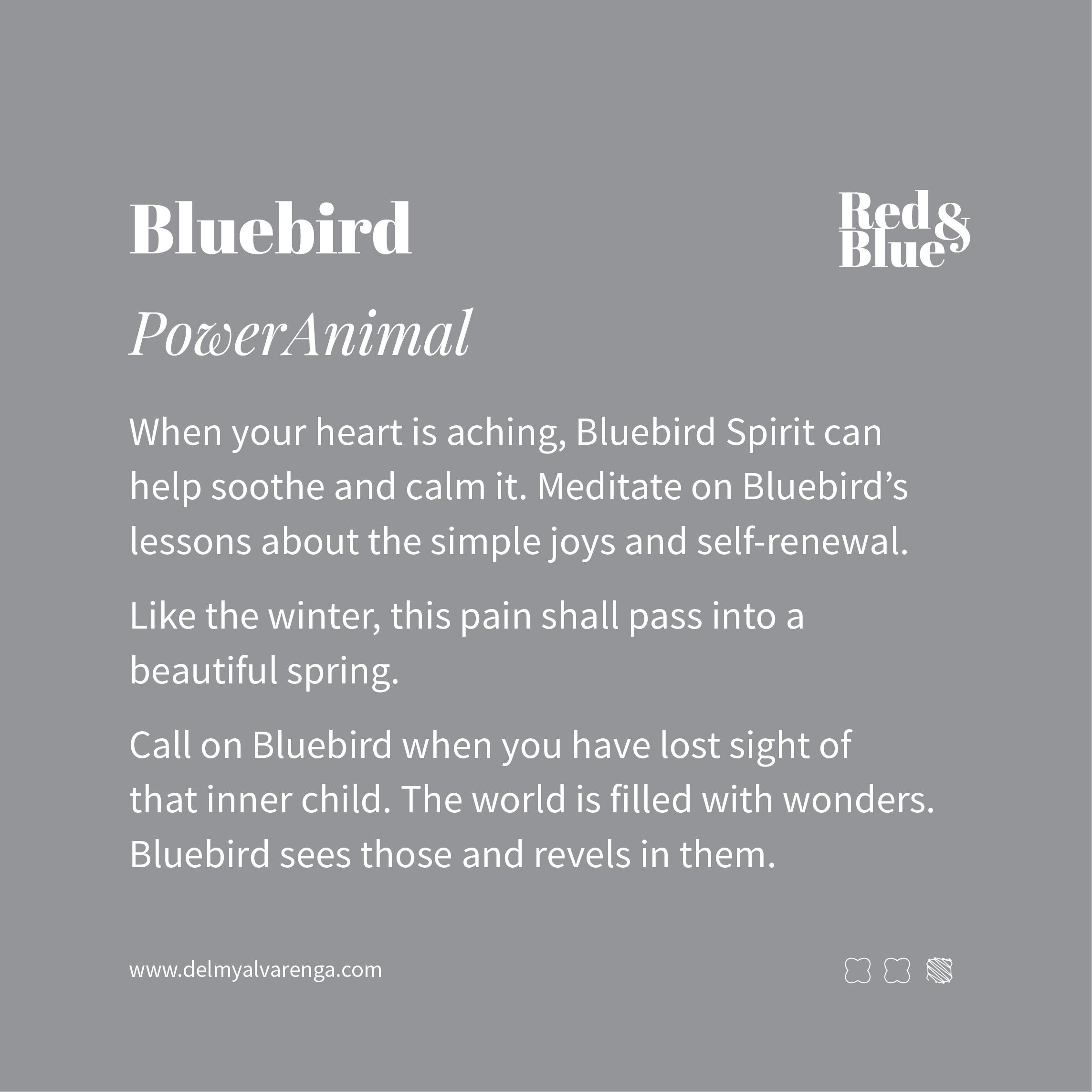 Bluebird Power Animal