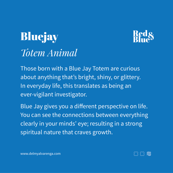 Blue Jay Totem Animal