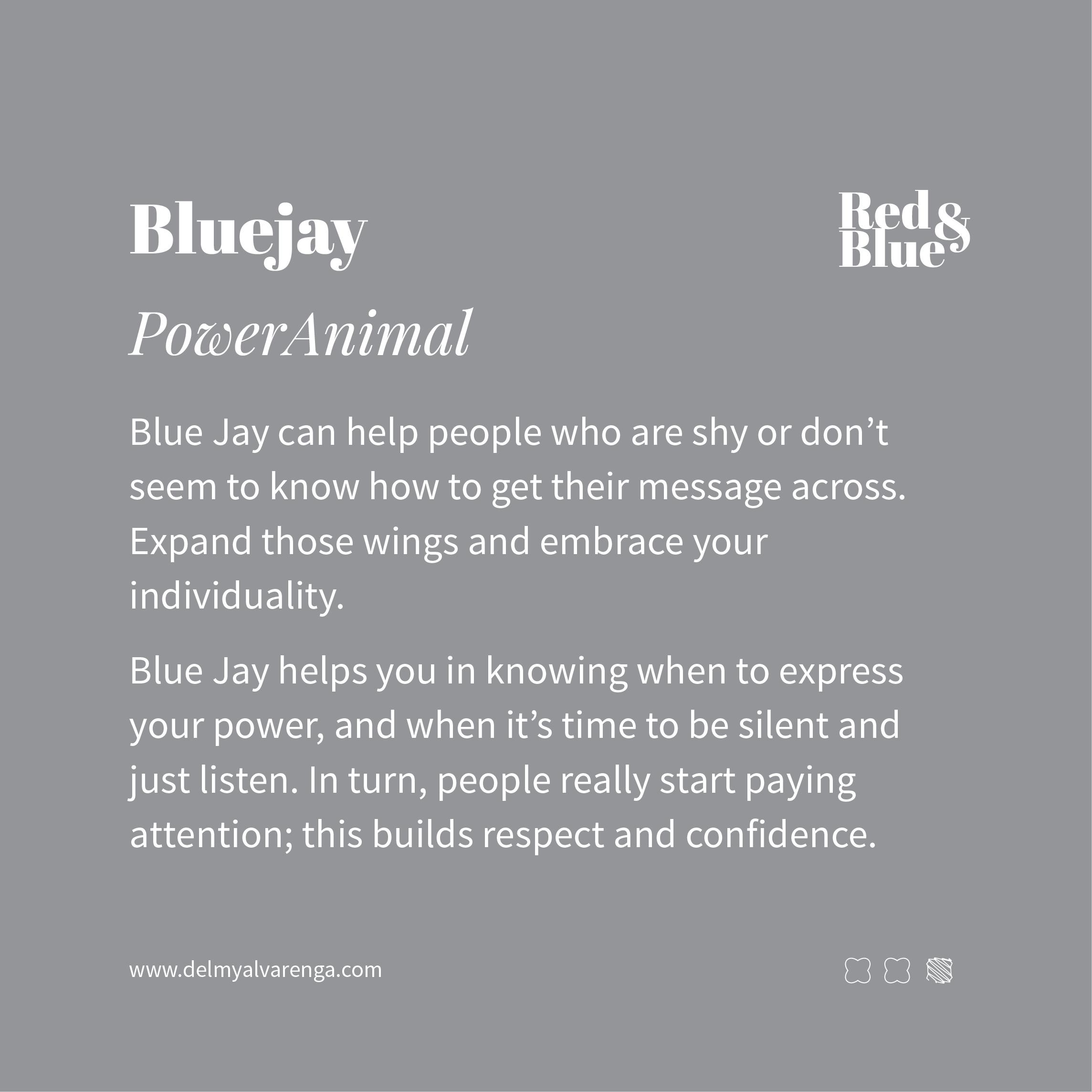 Blue Jay Power Animal