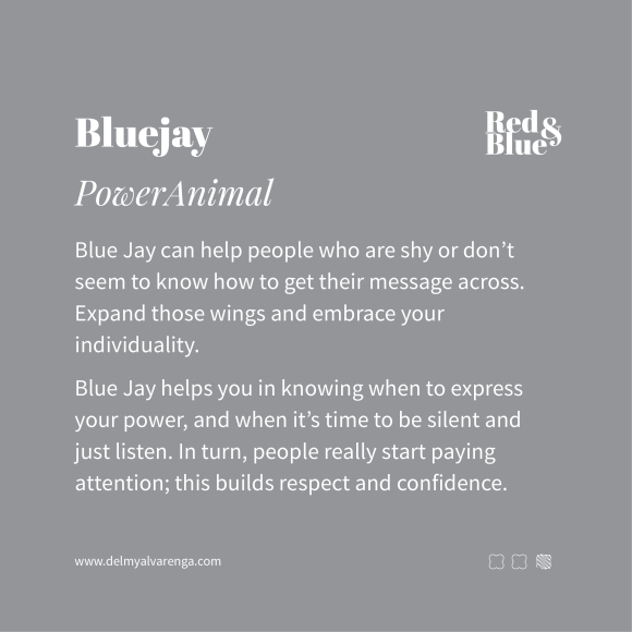Blue Jay Power Animal