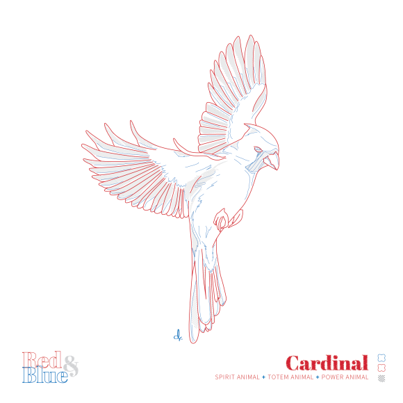 Cardinal Red and Blue Symbolism and Meaning