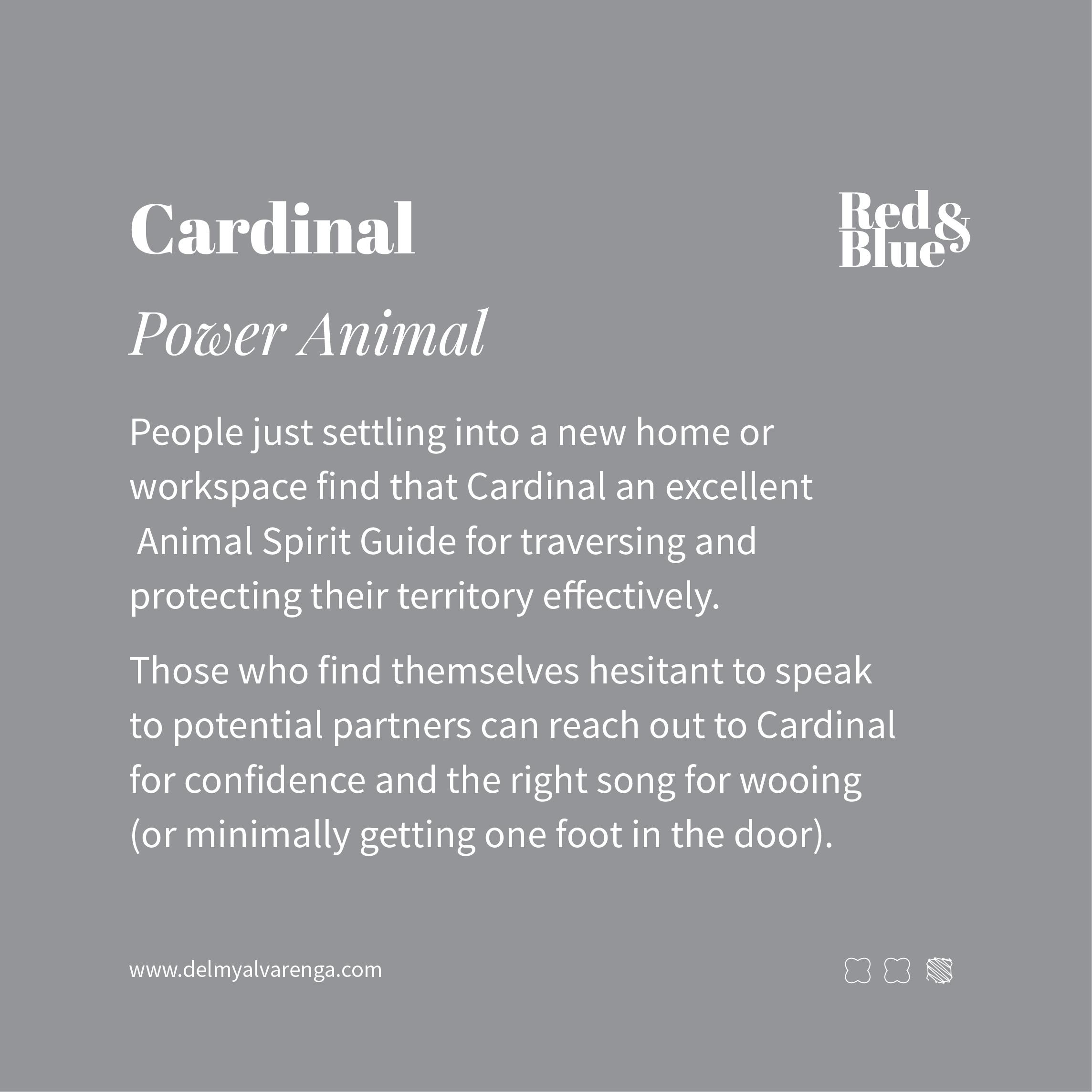 Cardinal Power Animal