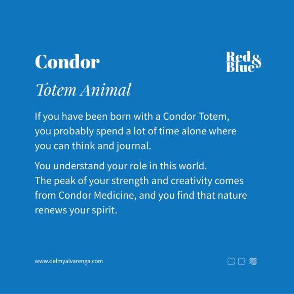 Condor Totem Animal