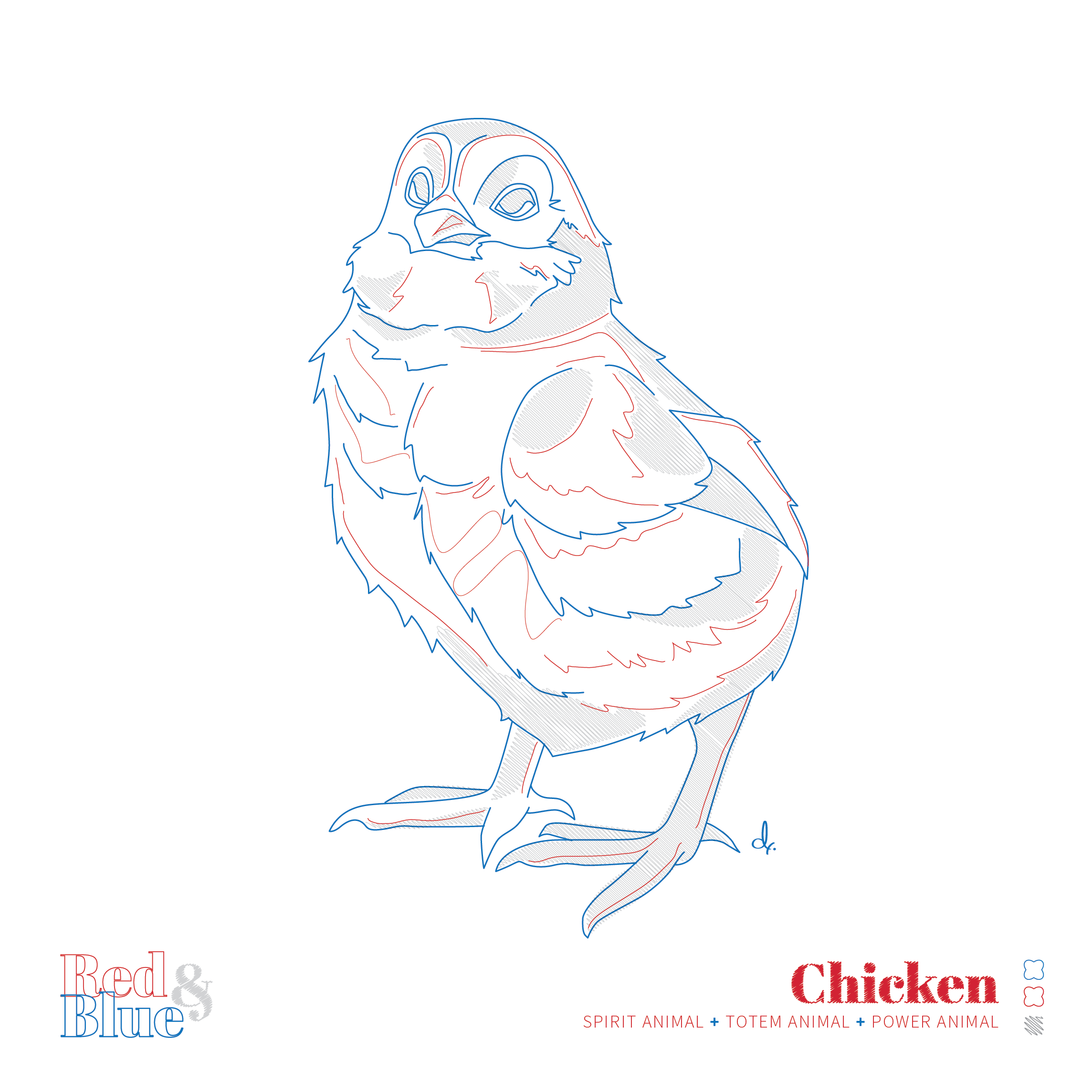 Chicken Red and Blue Symbolism and Meaning