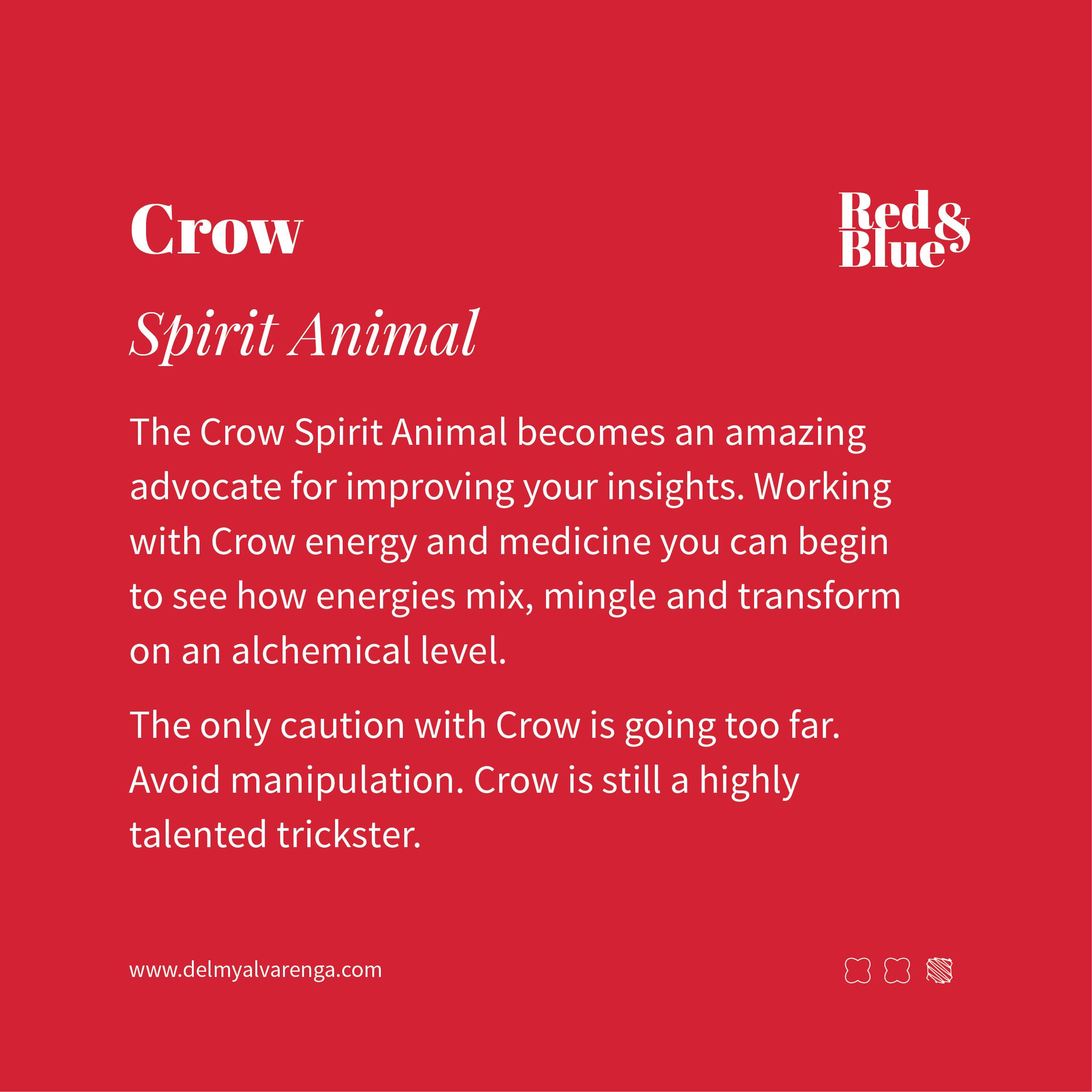 Crow Spirit Animal